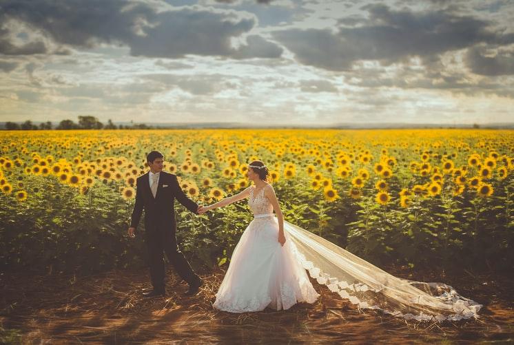 slunečnice a svatbě
