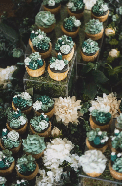 svatební cupcakes sukulenty