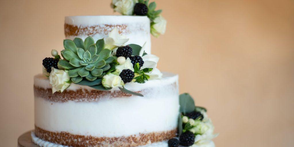 svatební dort se sukulenty