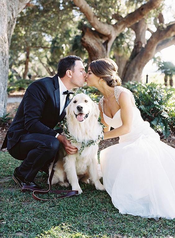 Svatební fotky se psem